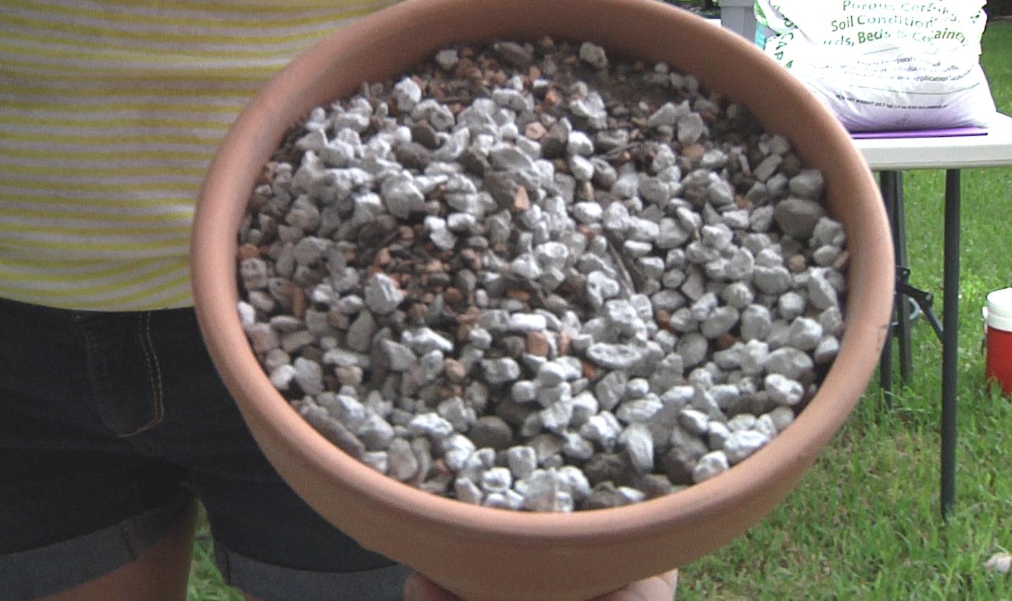 DIY Succulent soil