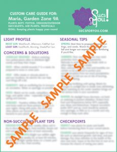 Custom Care Guide